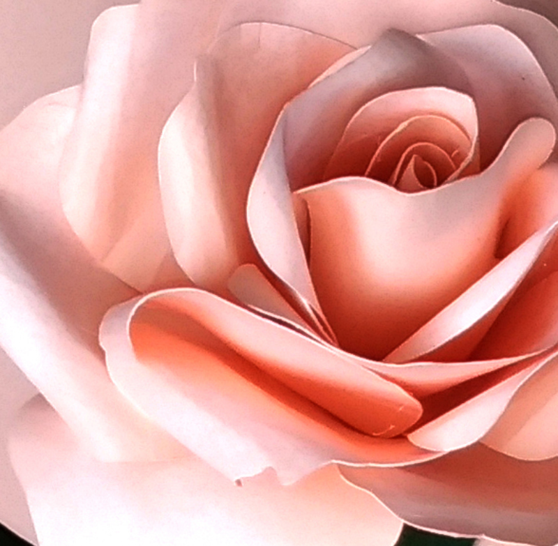 Rose-with-bud-(-+-video-tutorial-)