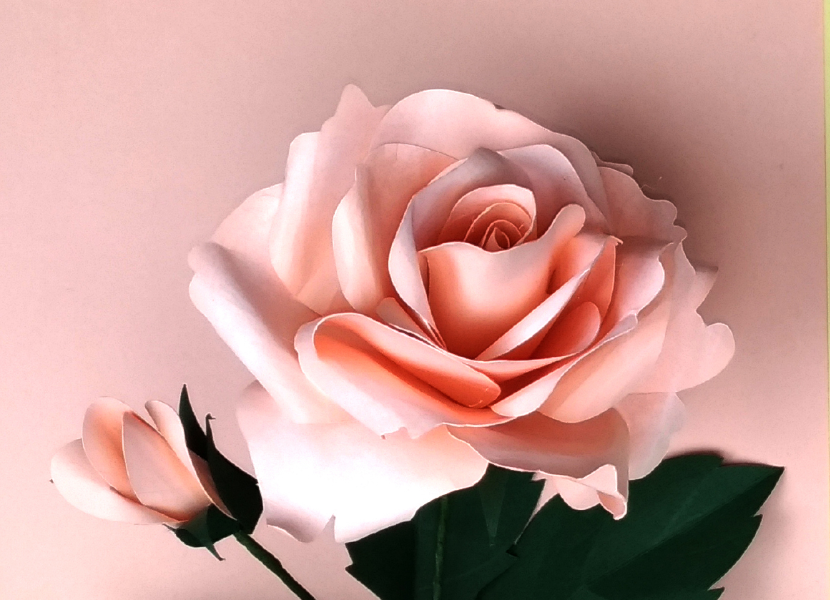 Rose-with-bud-(-+-tutorial-photo-)